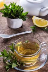 Fresh herbal tea in cup