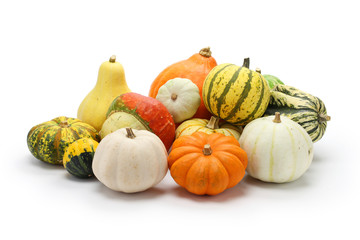 colorful pumpkin and squash collection