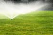 garden sprinkler on the green lawn - 70046292