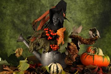 hallowen composizione con zucche