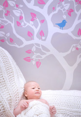 Newborn girl in cute baby room