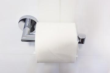 A Fresh Toilet paper roll on a steel hanger