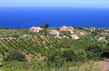 Gioiosa Marea, Sicilia