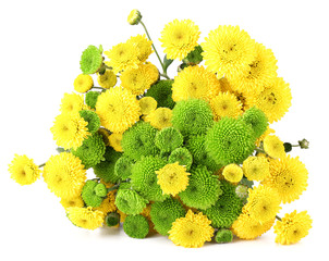 Beautiful bouquet of chrysanthemums flowers, isolated on white