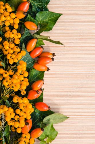 canvas print picture briar and yellow berry background