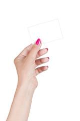 female hand holding blank card