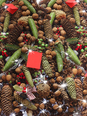 Set of various cones and nuts