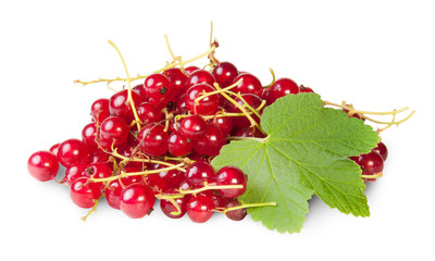 Bunch Of Red Currants With Currant Leaves