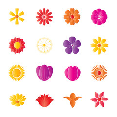 Flower Colorful Icons