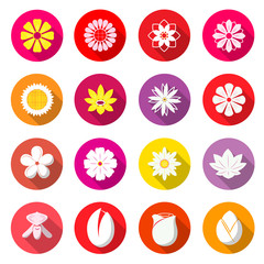 Flower Colorful Icons. Blossom Vector