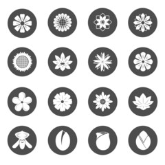 Flower Icons. Blossom Vector.