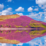 Landscape scenery of hill slope reflected in the water