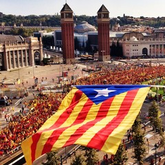 National Day of Catalonia 2014, in Barcelona, Spain
