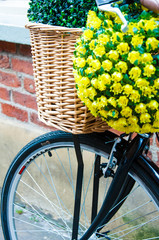 Close up on street bicycle with basket of flowers