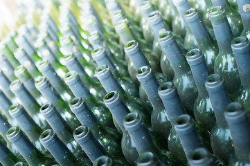 Rows of many empty wine bottles