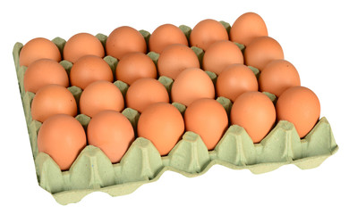 Egg carton against white background