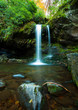 Grotto Falls in Great Smoky Mountain