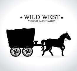 Western design