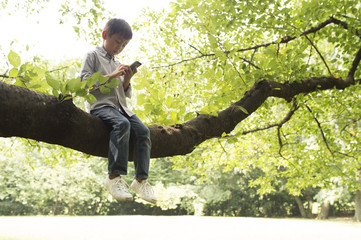 Boy that use the mobile phone sitting on a tree branch