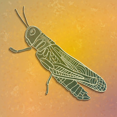 Grasshopper. Abstract background.