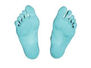 Feet isolated