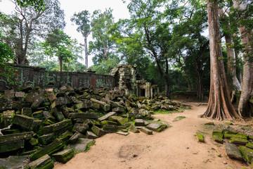 Ta Phrom, Angkor Wat, Cambodia