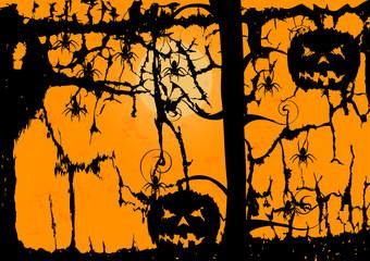 Ghost Pumpkin and spider on orange background
