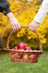 Girls holding a basket