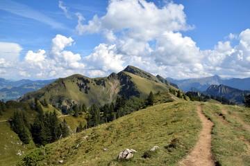 Panoramarundweg auf der Niedere mit Tristenkopf und Winterstaude