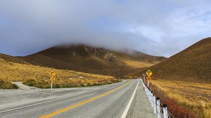 Road through the golden alpine