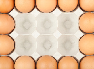 Eggs in tray forming a rectangle frame