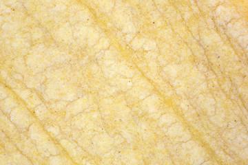 Close view of a corn tortilla