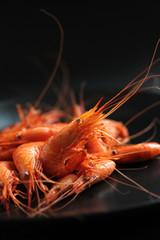Crevettes-6506
