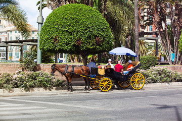Horse carriage with tourist in andalusia street