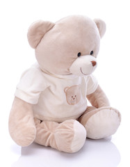 Teddy bear on a white background