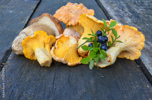 Blueberries and wild mushrooms