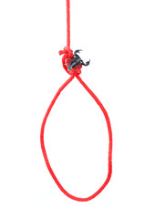 Red Rope Noose Isolated on White Background.