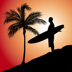 Sunset Surfer Palms