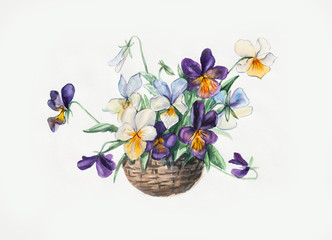 Decoration with blooming violets. Bouquet of violets.