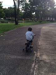 little kid ride a bicycle
