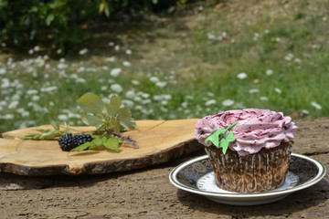 Delicious organic blackberry cupcake outdoors