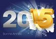 2015 - Bonne Année