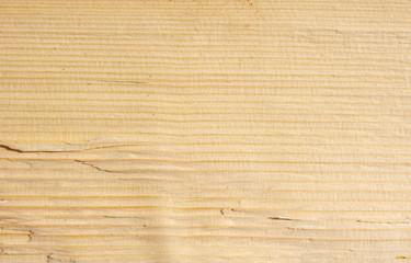 Split beech log  texture