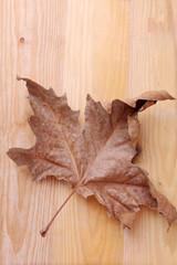 Foglia secca su un tavolo in legno