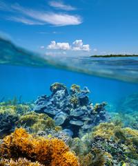 Over-under split view coral reef underwater