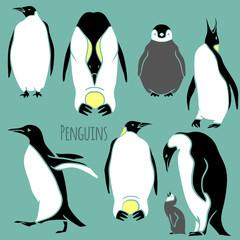 black and white penguin set