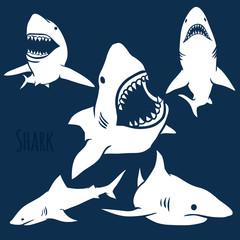 Danger Shark silhouettes set.