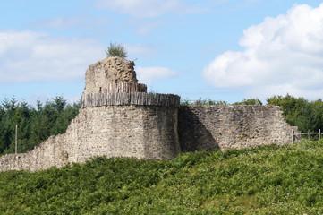 ruines des fortifications de la tour de Bridiers