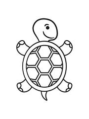 Süße niedliche Schildkröte