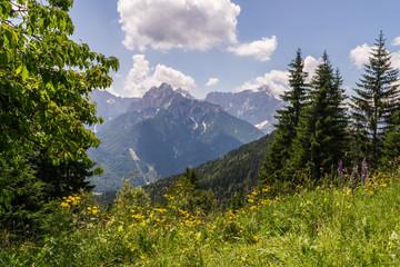View from Mt. Dreiländereck
